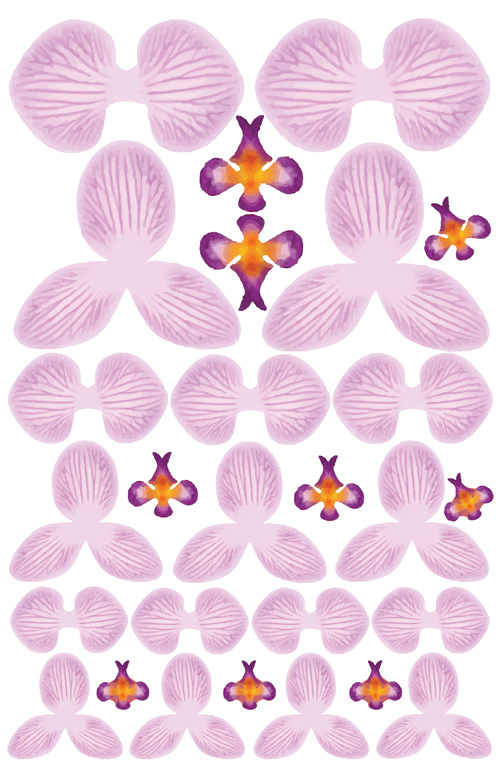 Orchid-Pink-